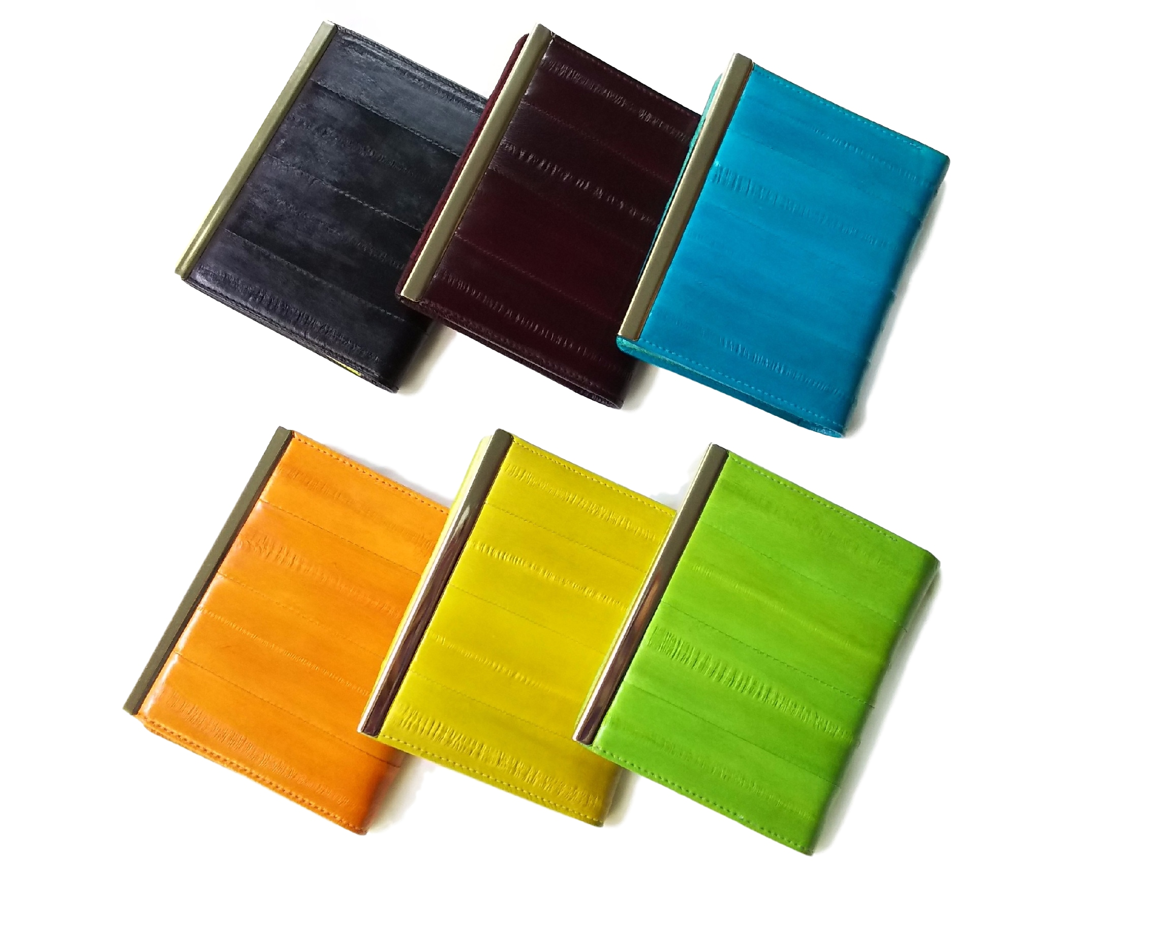 新カードケース(カラバリ)